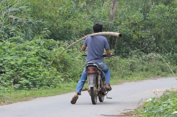 Moto-remorque 5: La tige de bambou